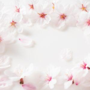 新春は桜ネイルで手元を華やかに彩ろう!成人式にもチャレンジしやすい桜ネイルとは?