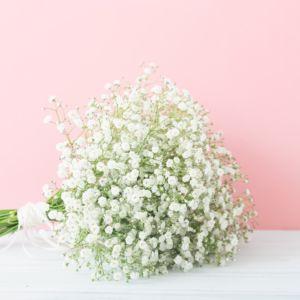 【かすみ草】花屋で買える季節は?開花時期・花言葉・加工方法まとめ!