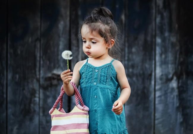 綿毛を吹く女の子